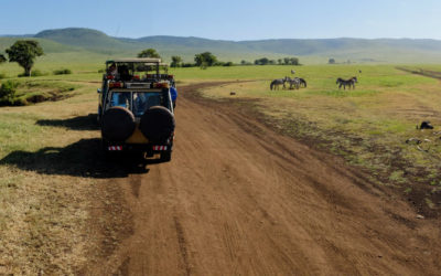 5 unforgettable safari holidays